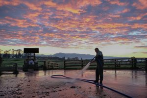 Pressure Washing Equipment Can Make Quick Work of Dairy Farm Cleaning