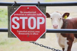 Follow These Agriculture Biosecurity Protocols to Protect Employees and Customers